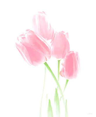 Photograph - Softness Of Pink Tulip Flowers by Jennie Marie Schell
