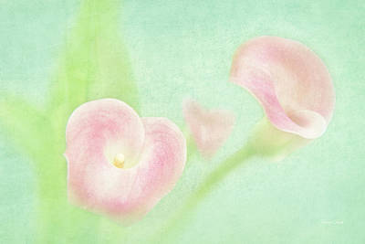 Photograph - Softness Of Spring by Cheryl Davis