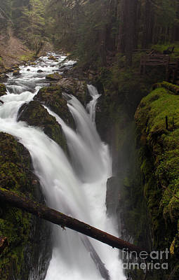 Olympic National Park Photograph - Sol Duc Falls by Mike Reid
