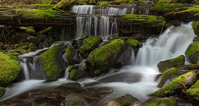 Sol Duc Stream Print by Mike Reid