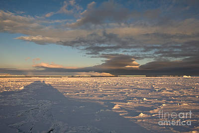 Erebus Photograph - Solid Sea Ice by Greg Dimijian