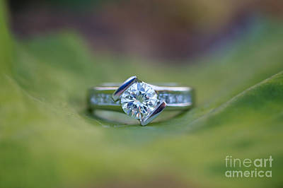 Leaf Engagement Ring Photograph - Solitaire On Leaf by Brooke Roby