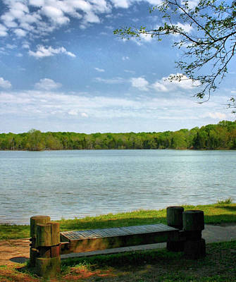 Percy Priest Lake Photograph - Solitary by Kristin Elmquist