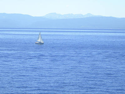 Photograph - Solitary Sailing On Lake Tahoe by Frank Wilson