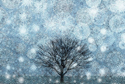 Solitary Winter Tree Caught In A Snow Storm Art Print by Andrew Bret Wallis