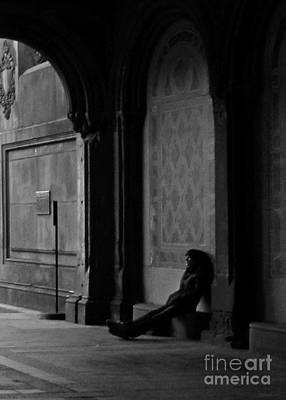 Photograph - Solitude by Deborah Smith