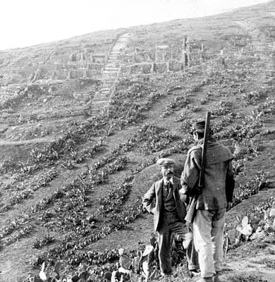 Mess Photograph - Soluntum Sicily - Old Roman Town Ruins - C 1906 by International  Images