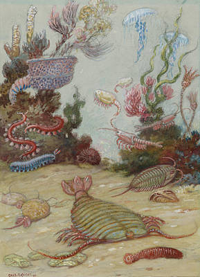 Some Of The Earliest Life Forms Still Art Print