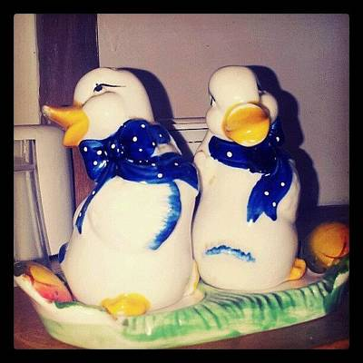 Decorative Photograph - Some Very #old #salt And #pepper by Liz Grimbeek