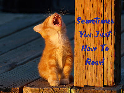Photograph - Sometimes You Just Have To Roar by DeeLon Merritt