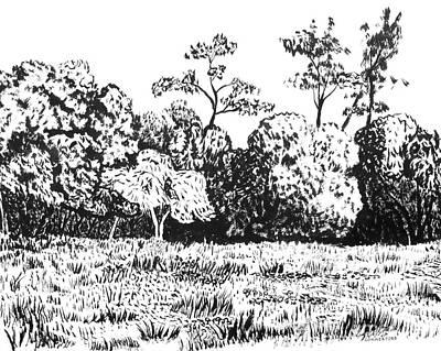 Sonoma County Art Print