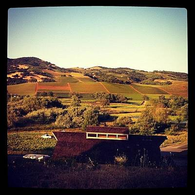 Vineyard Photograph - Sonoma Valley Mountains by Crystal Peterson