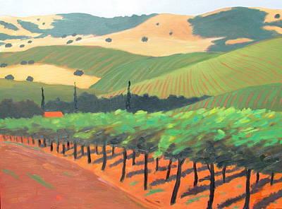 Sonoma Vinyard Art Print by Gary Coleman