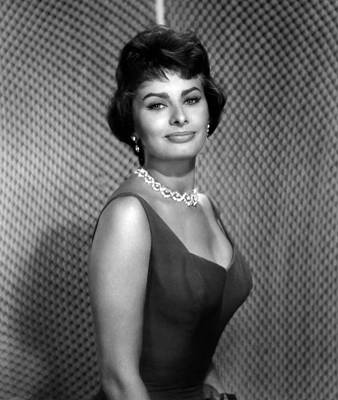 Colbw Photograph - Sophia Loren by Everett