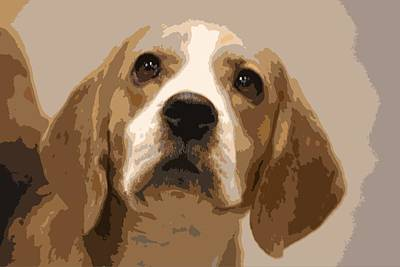 Photograph - Soulful Beagle by Donna G Smith