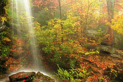 Sounds Of Autumn Art Print by Darren Fisher