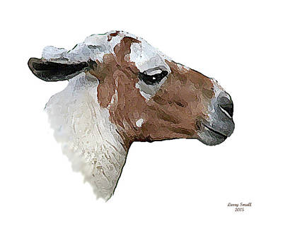 South American Goat Art Print by Larry Small