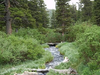 Wall Art - Photograph - South Boulder Creek by Bill Kennedy