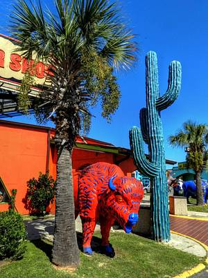 Photograph - South Of The Border 012 by Lance Vaughn