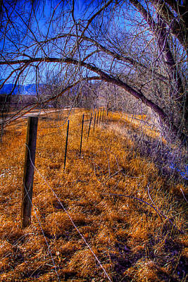 South Platte Fenceline Art Print