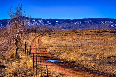 Photograph - South Platte Park by David Patterson