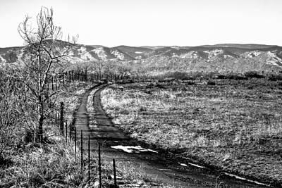 Photograph - South Platte Park II by David Patterson