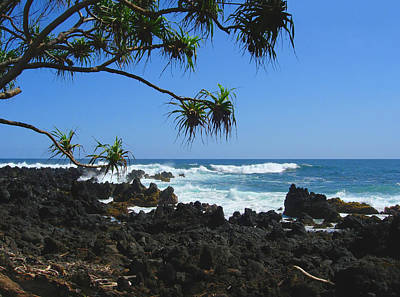 South Shore Of Maui Art Print by Connie Fox