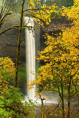 Autumn Leaf Photograph - South Silver Falls by Alvin Kroon