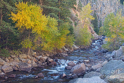 Canyons Photograph - South St Vrain Creek Autumn View by James BO  Insogna