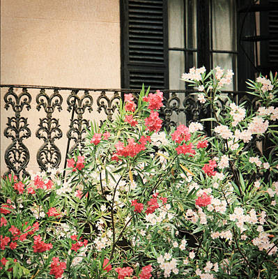 Art Print featuring the photograph Southern Charm by Mary Hershberger
