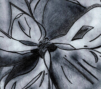 Magnolia Flower Drawing - Southern Magnolia Detail by Elizabeth Briggs