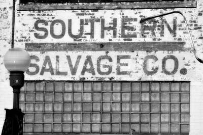 Photograph - Southern Salvage by Jan Amiss Photography