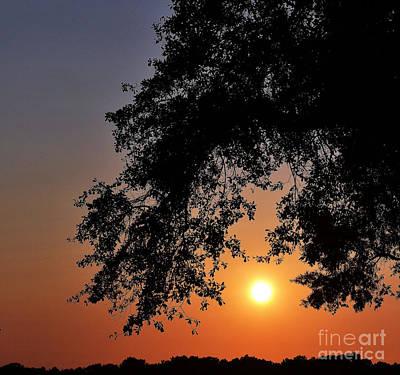 Photograph - Southern Sky by Melanie Kirdasi