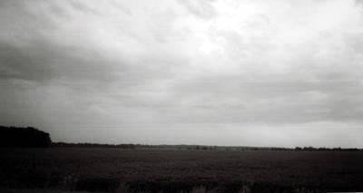 Photograph - Soybean Field- Richland Parish- Louisiana.  by Doug Duffey