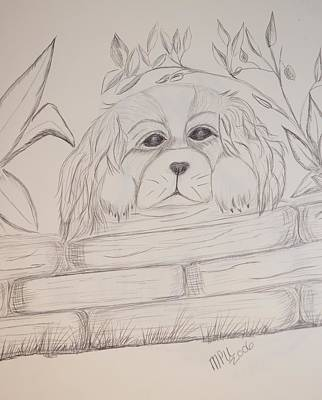Art Print featuring the drawing Spaniel Pup by Maria Urso