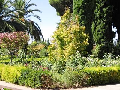 Photograph - Spanish Garden by John Shiron