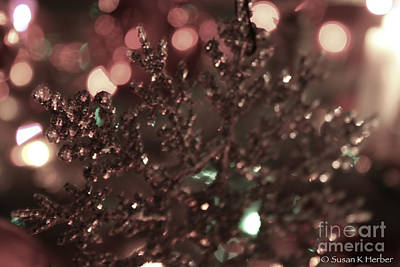 Photograph - Sparkle by Susan Herber