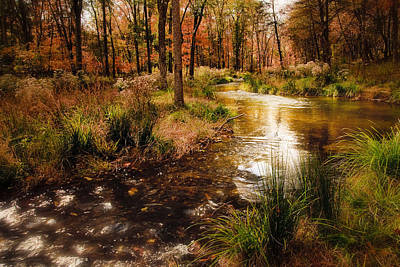 Photograph - Sparkling River At Beaver's Bend by Tamyra Ayles