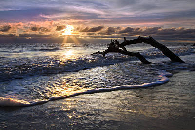Beach Scenes Photograph - Sparkly Water At Driftwood Beach by Debra and Dave Vanderlaan