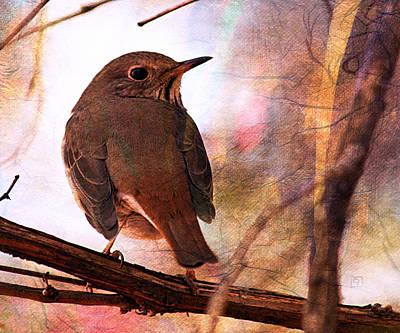 Digital Art - Sparrow by Jean Moore