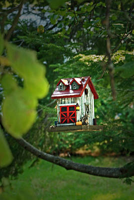 Photograph - Sparrows Dream House by Cyryn Fyrcyd