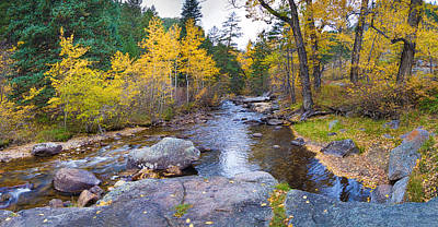 Creek Photograph - Special Place In The Woods  by James BO  Insogna