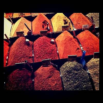 Tasty Wall Art - Photograph - Spices by Isabel Poulin