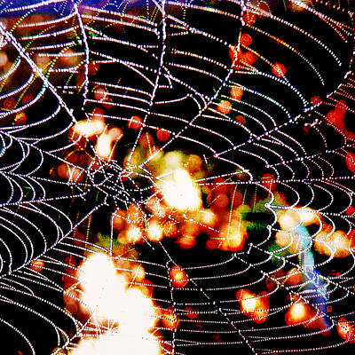 Digital Art - Spider Love by Greta Thorsdottir