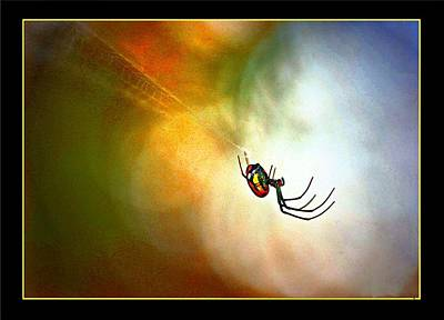 Digital Art - Spider On Web by Carrie OBrien Sibley