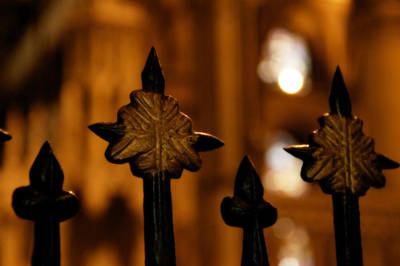 Photograph - Spikes And Bokeh by Lisa Knechtel