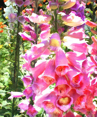 Spiky Painting - Spikes Of Pink Foxgloves by Elaine Plesser