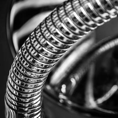 Photograph - Spinal Armor by Gene Hilton