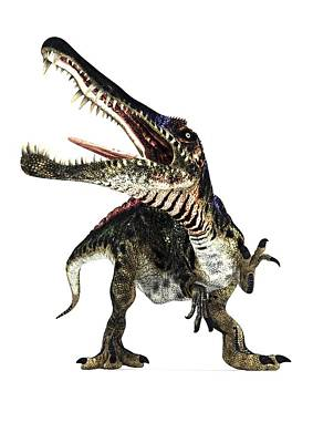 Spinosaurus Dinosaur, Artwork Art Print by Animate4.comscience Photo Libary