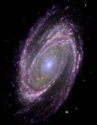 Galaxy Evolution Explorer Photograph - Spiral Galaxy M81, Composite Image by Nasacxcesajpl-caltechs Markoff Et Al